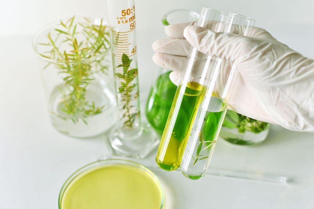 cosmeticos-naturales-personalizados